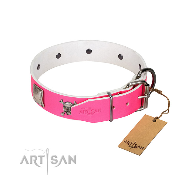 Exquisite natural leather dog collar with durable studs