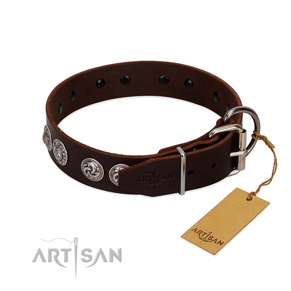 Remarkable leather collar for your pet stylish walks
