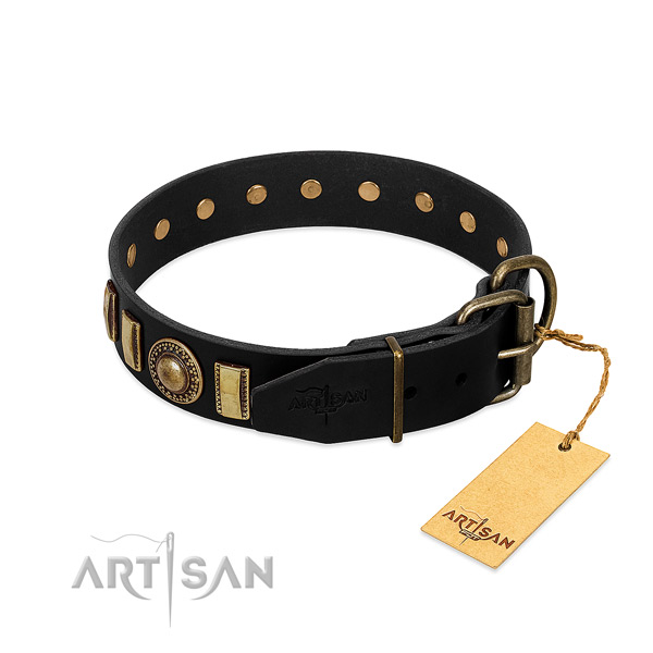 Best quality leather dog collar with adornments