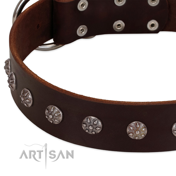 Soft genuine leather dog collar with embellishments for your doggie