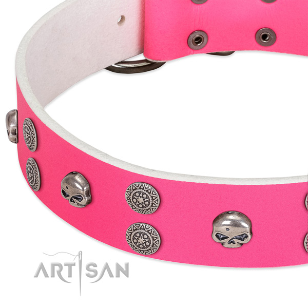 Soft to touch natural leather dog collar with awesome adornments