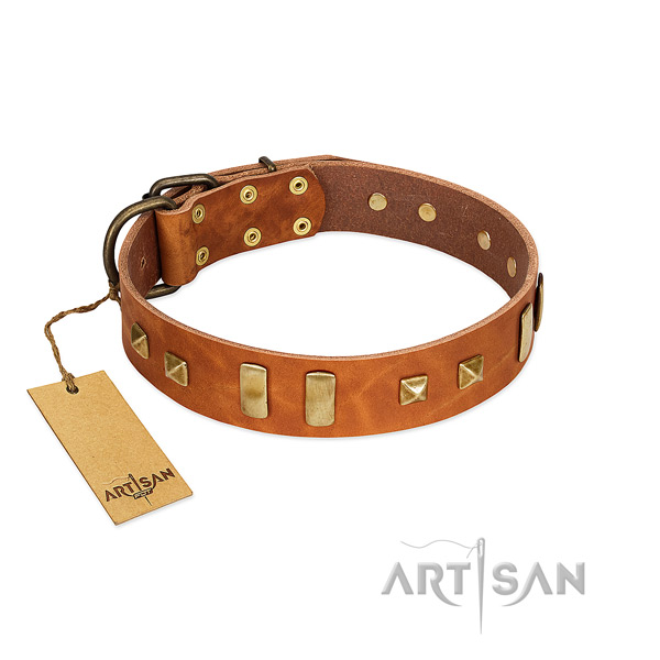 Full grain leather dog collar with rust resistant hardware