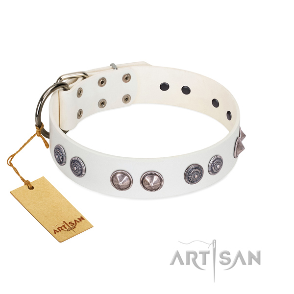 Corrosion resistant studs on comfy wearing collar for your dog