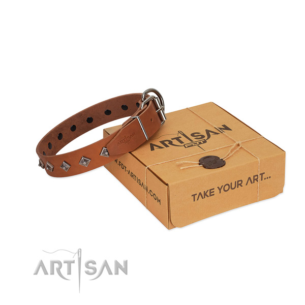 Remarkable embellishments on natural leather dog collar for easy wearing