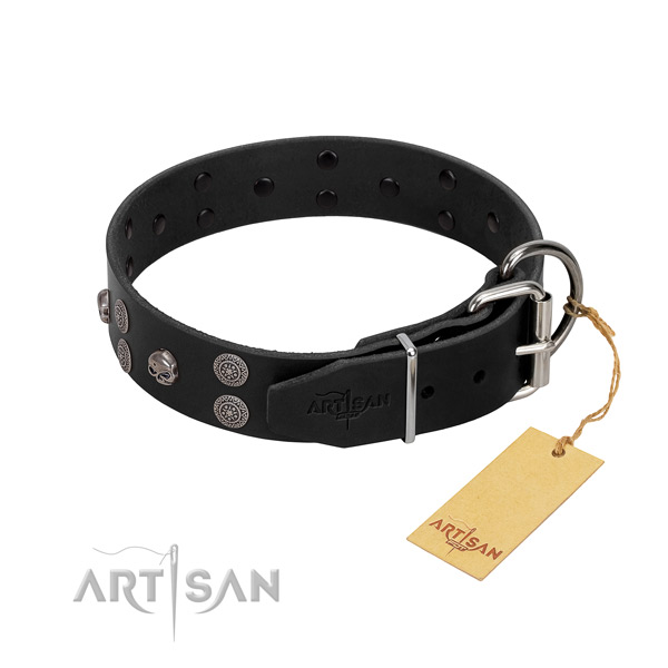 Flexible full grain genuine leather dog collar with embellishments for comfy wearing