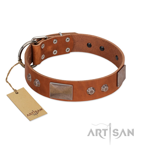 Easy adjustable full grain natural leather dog collar with strong buckle
