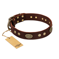 """Old-fashioned Glamor"" FDT Artisan Brown Leather Pitbull Collar with Old Bronze Look Plates and Circles"