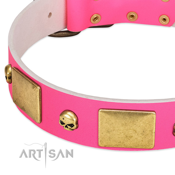 Best quality natural leather collar with rust-proof adornments for your canine
