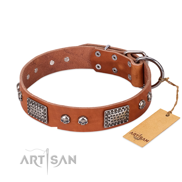Adjustable natural genuine leather dog collar for daily walking your canine
