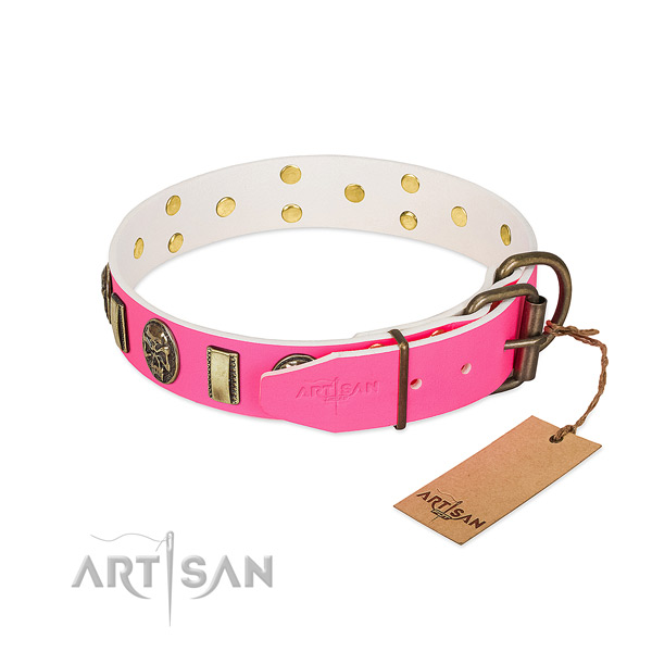 Rust resistant embellishments on full grain leather dog collar for your dog