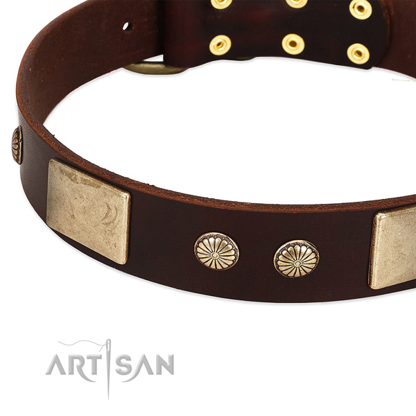 Corrosion proof buckle on full grain natural leather dog collar for your pet