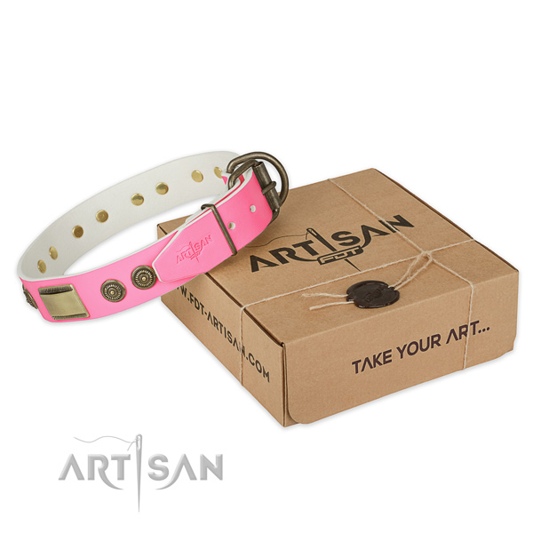Reliable traditional buckle on dog collar for easy wearing