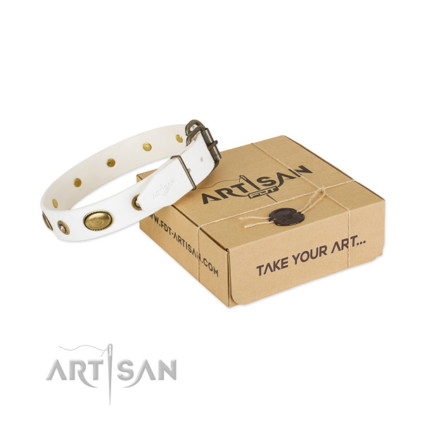 Significant full grain genuine leather collar for your lovely four-legged friend