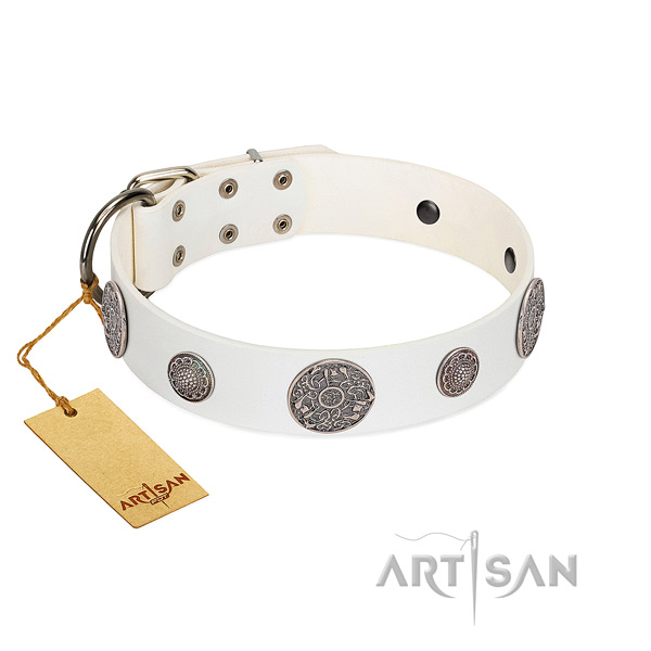 Top quality genuine leather collar for your impressive four-legged friend