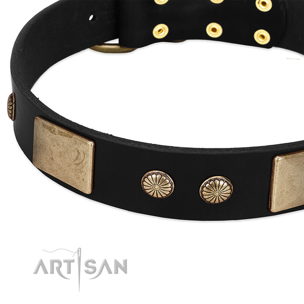 Full grain natural leather dog collar with studs for easy wearing