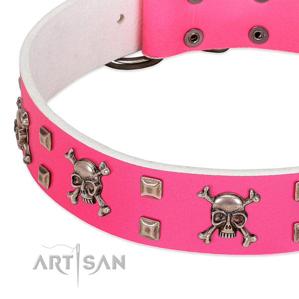 Reliable decorations on full grain genuine leather dog collar