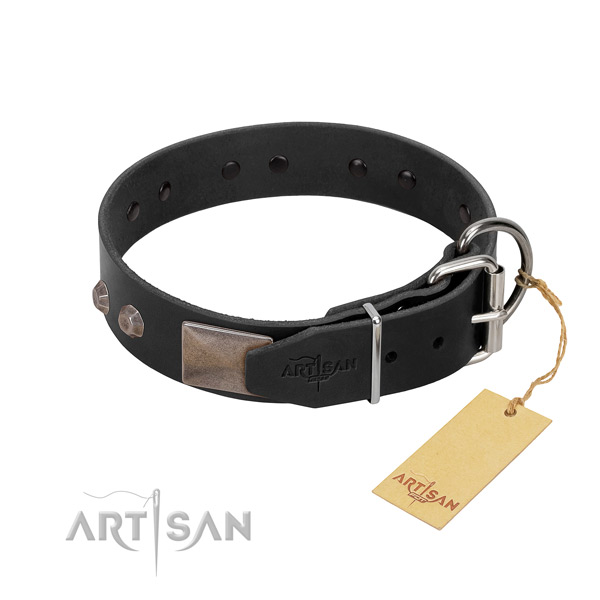 Incredible full grain genuine leather dog collar for walking your dog