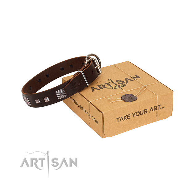 Exceptional full grain leather collar with adornments for your four-legged friend