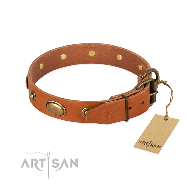 Rust-proof hardware on full grain natural leather dog collar for your pet