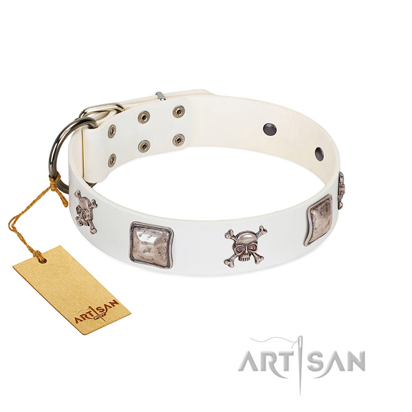 Incredible dog collar handcrafted for your stylish dog