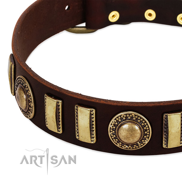 Gentle to touch leather dog collar with corrosion resistant traditional buckle