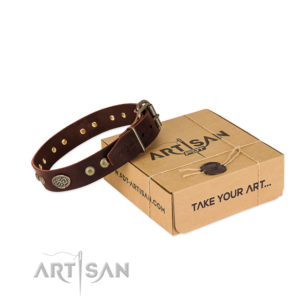 Durable adornments on Genuine leather dog collar for your doggie