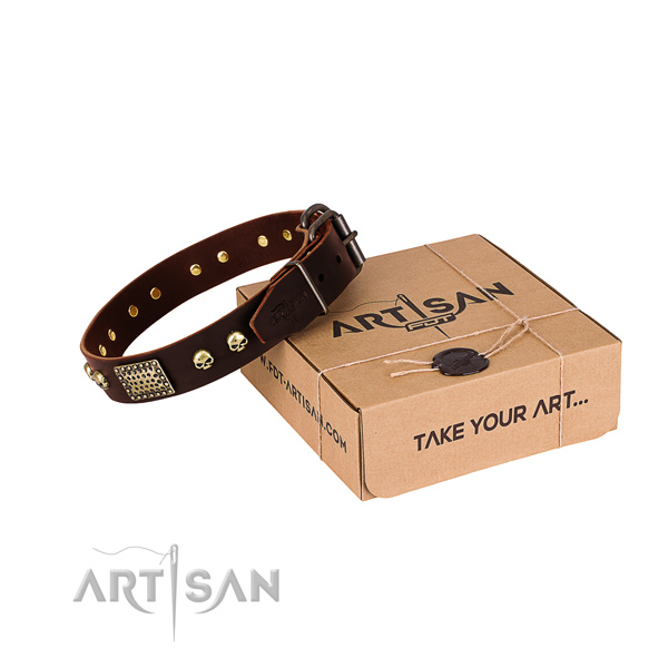 Rust-proof traditional buckle on dog collar for daily walking