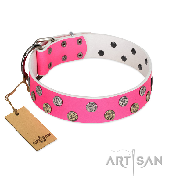 Significant embellishments on natural leather collar for comfy wearing your doggie