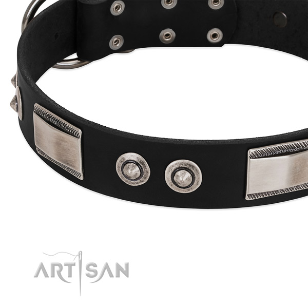 Embellished collar of full grain genuine leather for your impressive four-legged friend