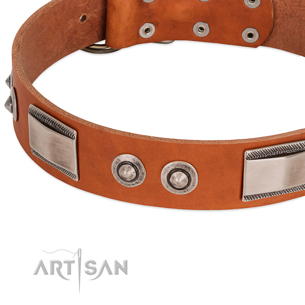 Unique genuine leather collar with studs for your dog