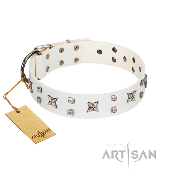 Gentle to touch full grain genuine leather dog collar with decorations for walking