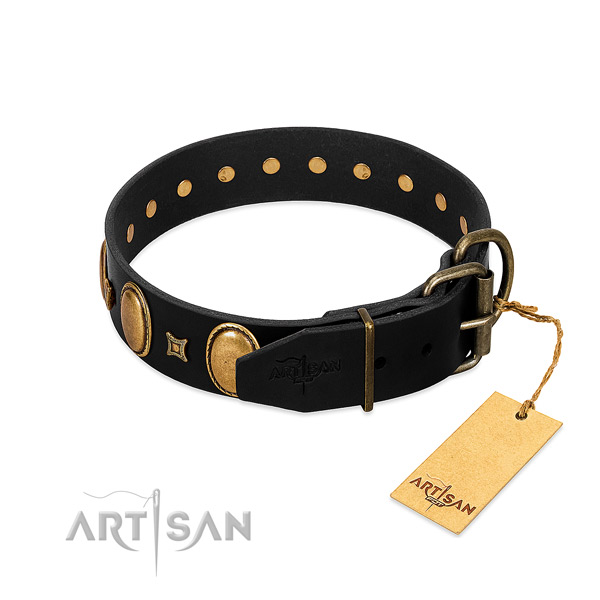 Rust resistant embellishments on handy use dog collar