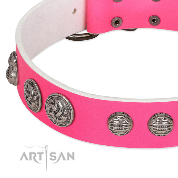 Corrosion proof hardware on genuine leather collar for walking your pet