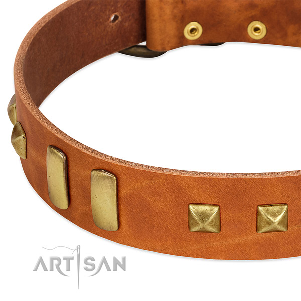 Soft full grain natural leather dog collar with adornments for comfy wearing