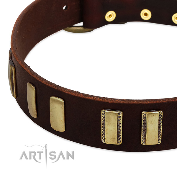 Natural leather dog collar with durable hardware for daily use