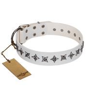 """Midnight Stars"" FDT Artisan Fashionable Leather Pitbull Collar with Old Silver-like Plated Decorations"