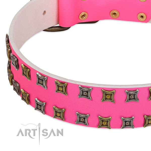 Natural leather dog collar with decorations for your attractive four-legged friend