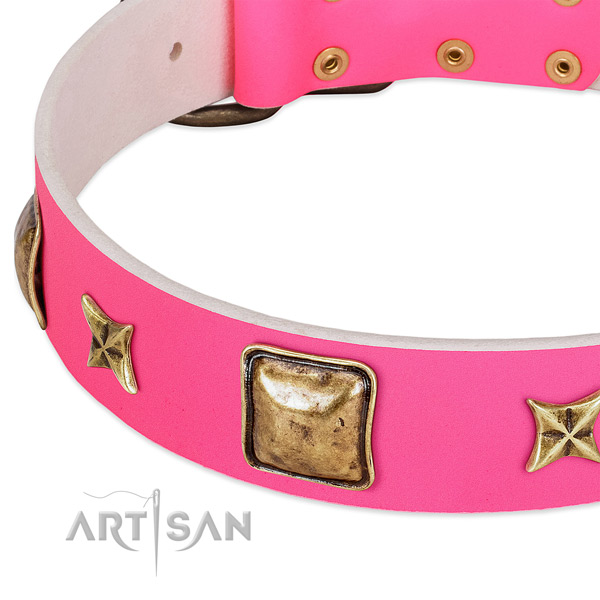 Natural leather dog collar with amazing studs