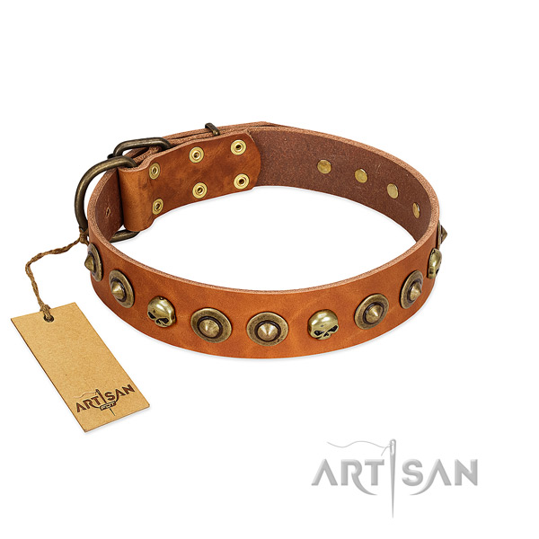Full grain leather collar with stylish decorations for your doggie