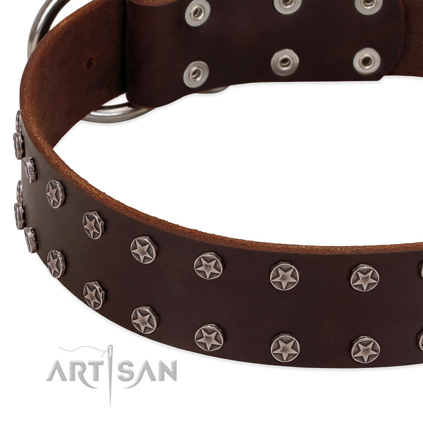 Soft to touch leather dog collar with embellishments for your dog