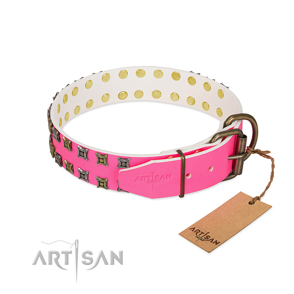 Full grain genuine leather collar with impressive studs for your four-legged friend