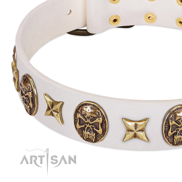 Exceptional dog collar handcrafted for your lovely doggie