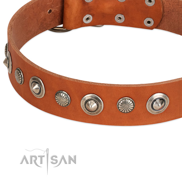 Extraordinary adorned dog collar of fine quality genuine leather