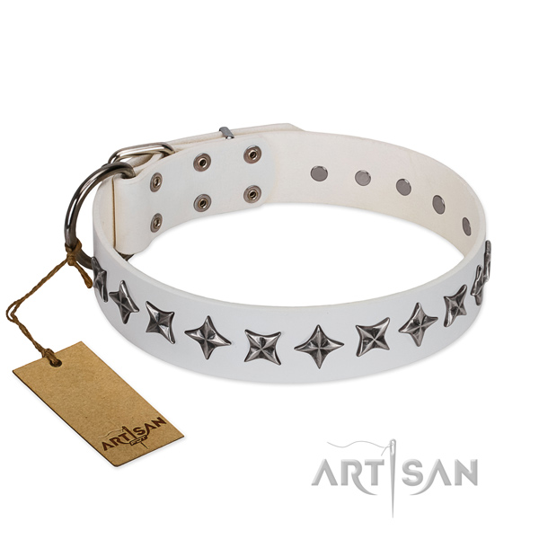 Daily use dog collar of top notch genuine leather with studs