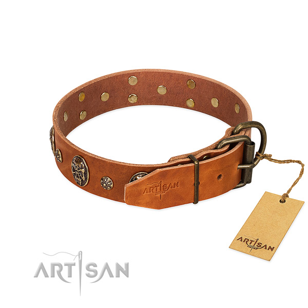 Rust resistant decorations on genuine leather dog collar for your pet