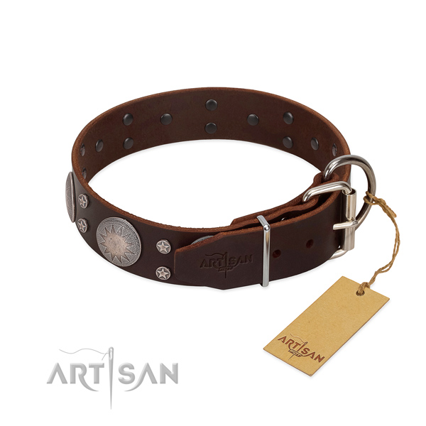 Unique studs on natural leather dog collar for everyday use