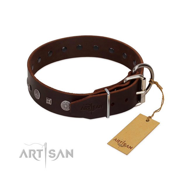 Rust resistant D-ring on genuine leather collar for fancy walking your pet
