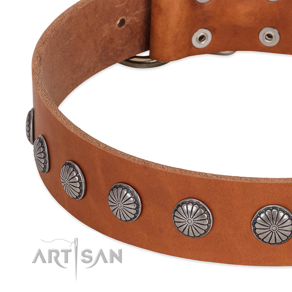 Gentle to touch full grain leather dog collar with embellishments for handy use