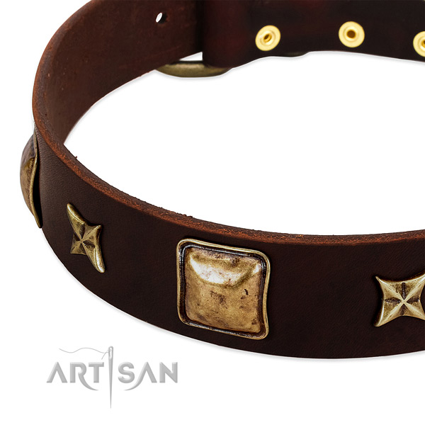 Strong embellishments on full grain leather dog collar for your four-legged friend