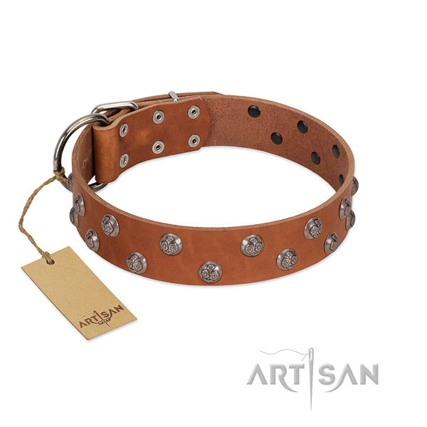 Quality genuine leather dog collar with decorations